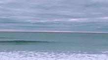 Sea の画像(ニュージーランドに関連した画像)