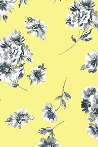 花柄 壁紙の画像(プリ画像)