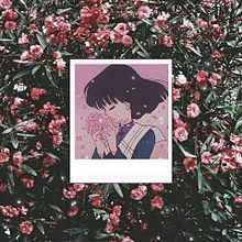儚き乙女 プリ画像