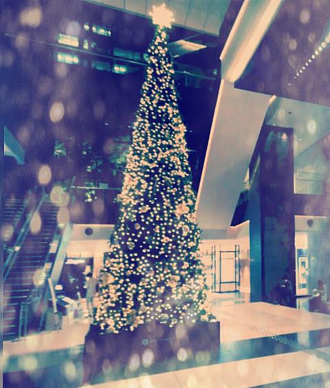 クリスマスツリーの画像 プリ画像