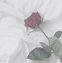♥.。.:*♡の画像(おしゃれ/オシャレに関連した画像)