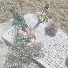 ♥.。.:*♡の画像(オルチャン/おるちゃん/韓国に関連した画像)