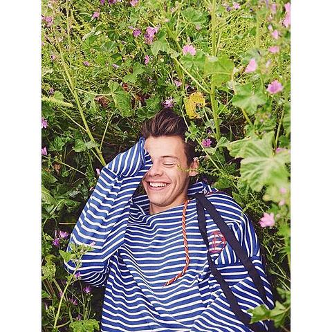 Harry Stylesの画像(プリ画像)