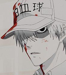 白血球さんの画像(アイコン アニメに関連した画像)