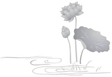 蓮のモノクロイラスト プリ画像