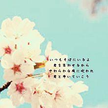 歌詞 桜 河口 恭吾 【桜/河口恭吾】歌詞の意味を解釈!桜ソングの代名詞!寄り添う歌詞を紐解くと…もしかして結婚ソング?