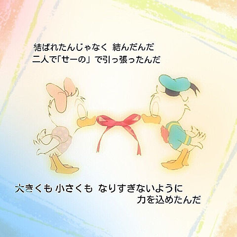 Aimer  蝶々結びの画像 プリ画像