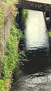 水が好きなので撮ってみました。の画像(綺麗に関連した画像)