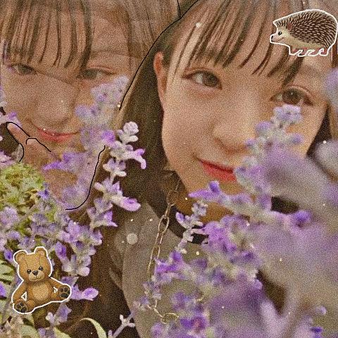 minamiのアイコンの画像(プリ画像)