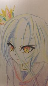 シロちゃんの画像(ノゲノラに関連した画像)