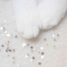 starの画像(glitterに関連した画像)