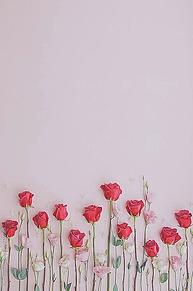 薔薇🌹の画像(ドライフラワーに関連した画像)