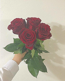薔薇の画像(ドライフラワーに関連した画像)