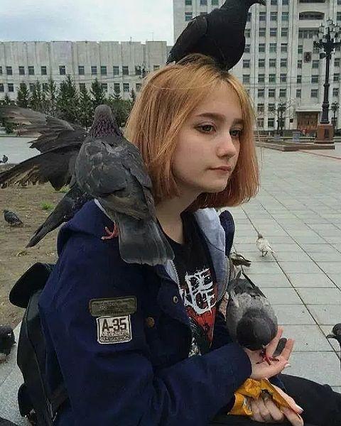 鳥の画像 プリ画像