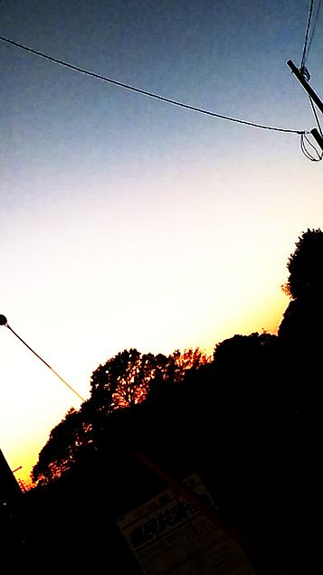 夕日 めっちゃ綺麗でしたの画像 プリ画像