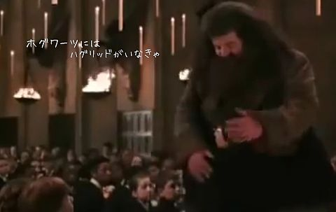 ハリーポッターと秘密の部屋 ラストシーンの画像 プリ画像