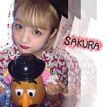 SAKURA プリ画像