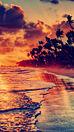 海 ビーチ 夕焼け プリ画像