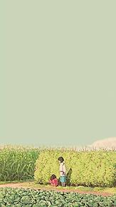 ジブリの画像(スタジオジブリに関連した画像)