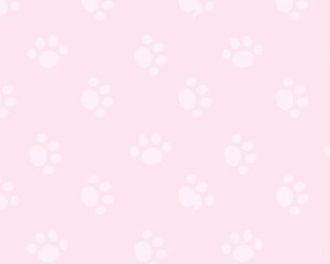 ฅ背景ฅ➳使用 ❤︎𝑎𝑛𝑑💬𝑎𝑛𝑑+👤の画像(プリ画像)