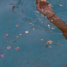 💐の画像(かわいい 素材 花に関連した画像)