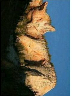 景色風景空外猫の画像 プリ画像