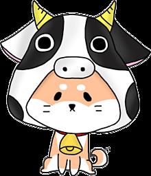 丑年の画像(柴犬に関連した画像)
