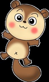 タヌキ プリ画像