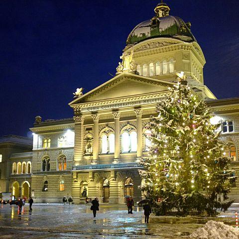 建物/クリスマスツリー/クリスマス/白/ホワイト/景色の画像(プリ画像)