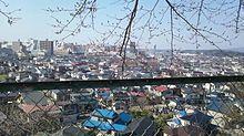 富/士山からの眺めの画像(眺めに関連した画像)