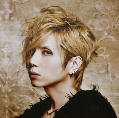 Yasu Acid Black Cherry