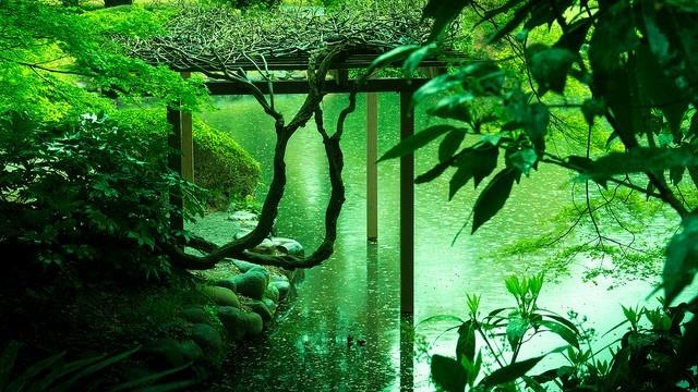 言の葉の庭の画像 p1_10