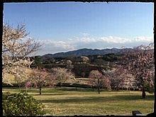 茨城県 芸術の丘公園 プリ画像