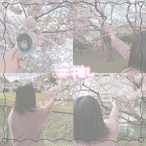 桜 with 推しの画像(プリ画像)