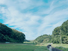 景色の画像(空 綺麗に関連した画像)