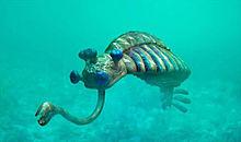 古代生物 プリ画像