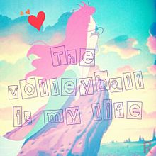 The volleyball is my lifeの画像(プリ画像)