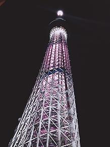 東京スカイツリーの画像(東京スカイツリーに関連した画像)