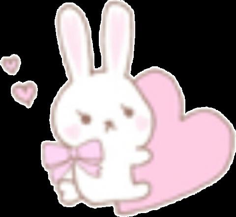 ♡♡  Ribbon Rabbit  ♡♡
