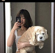 韓国女の子の画像(国に関連した画像)