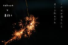 線香花火の画像(線香花火に関連した画像)