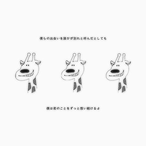 110 きりんの画像(プリ画像)