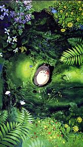 トトロ 背景 保存はいいね🧚♂️🧚♂️の画像(トトロ かわいいに関連した画像)