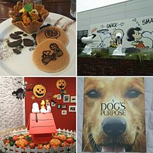 Snoopy museumの画像(スヌーピーミュージアムに関連した画像)