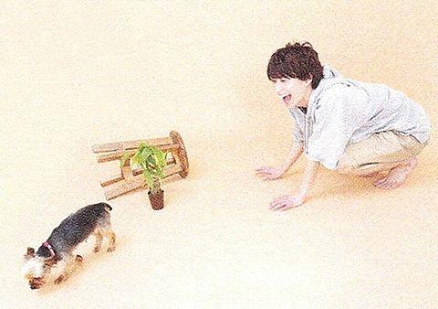 SnowMan/佐久間大介の画像(プリ画像)