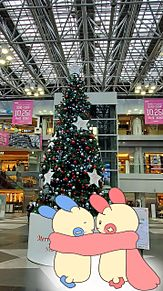 クリスマス プリ画像