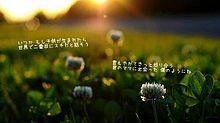 らいおんハート/SMAPの画像(らいおんハートに関連した画像)