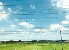 保存☞いいねの画像(sanamaru.に関連した画像)