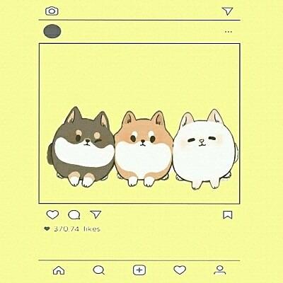 可愛い犬の画像(プリ画像)