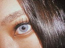 目の画像(外人に関連した画像)